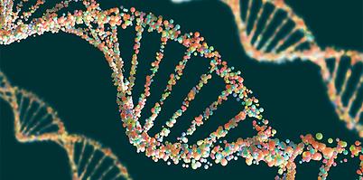 SSN_Website_genetics_causes_back_pain_ph