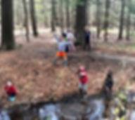 forest river.jpg