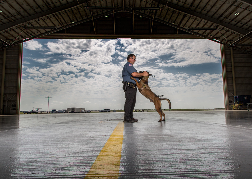 Security K-9 and Handler