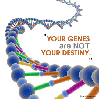 Your Genes are JUST Genes
