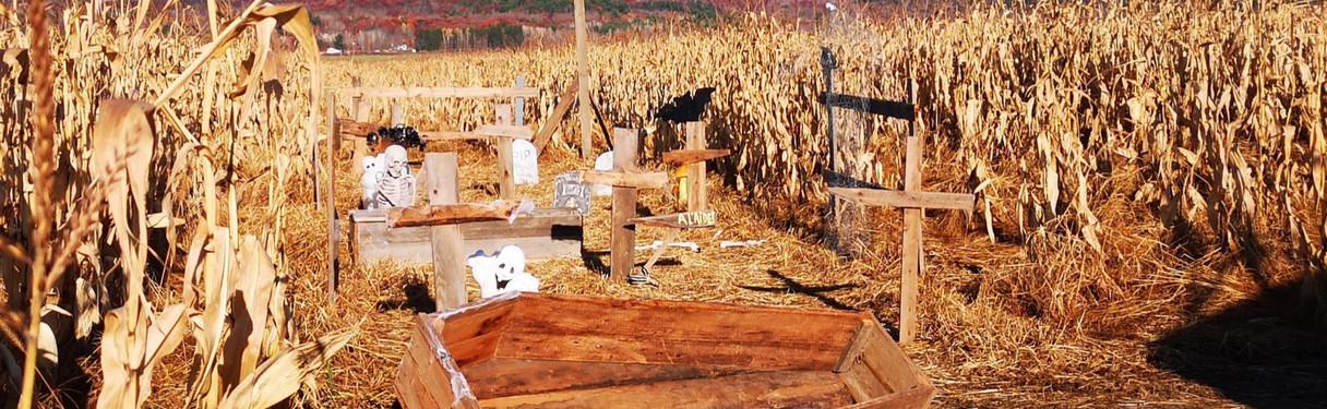 Le Grand Labyrinthe de Lanaudière - Halloween