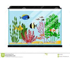 cartoon-fishes-aquarium-saltwater-freshw
