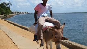 Lamu - et levende swahilisamfunn - hva kan du gjøre og hvor kan du bo