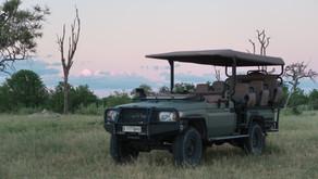 En dag på Safari