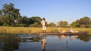 Botswana - Magisk Mokoro tur i Okavango deltaet