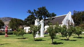 Cape Town - Steenberg - vingård og golf