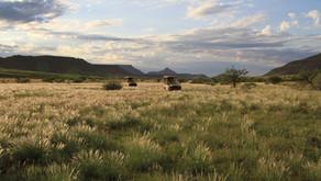 Namibia - Damaraland og hulemaleriene i Twyfelfontein