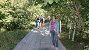 New York - Walk The High Line