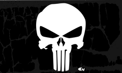 Punisher Skull 1
