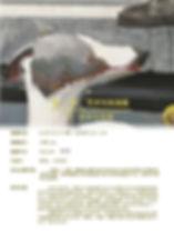 海报6  权利与构建.jpg