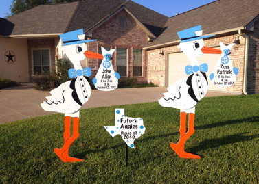 Twin Boy Stork Rental