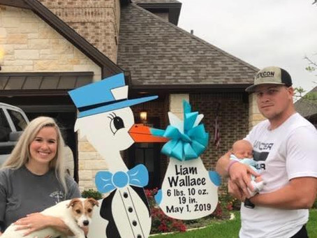 Newborn Stork Yard Sign ~ College Station, TX