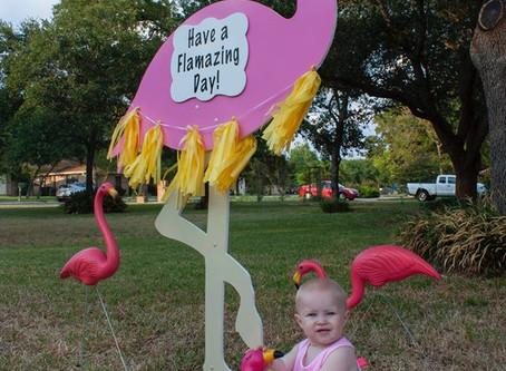 Birthday Flamingo Sign ~ College Station, TX