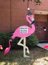 School Flamingo