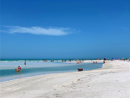 FREE & FUN Things to Do in Sarasota