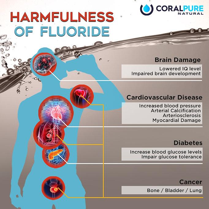 5 May - Harmfulness of fluoride.jpg
