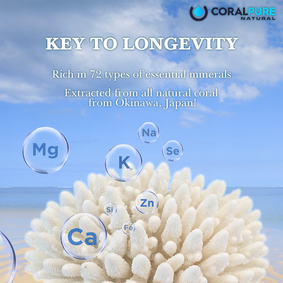 Coral Pure Water Filter Alkaline Water Hydrogen Purifiers Antioxidant TDS Benefits of CoralMinerals