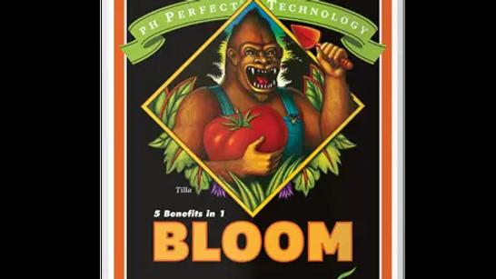 AN PH Perfect Bloom 1L