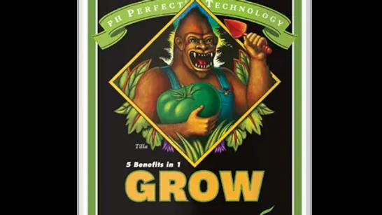 AN PH Perfect Grow 1L