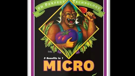 AN Ph Perfect Micro 1L