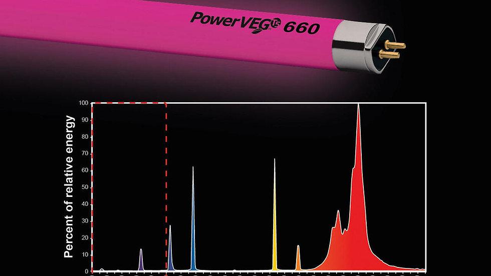 Eye Power Veg Ho 660
