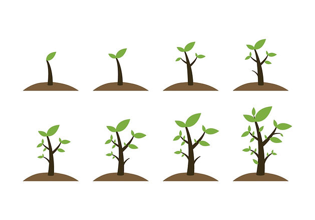 free-grow-up-plant-icons-vector.jpg