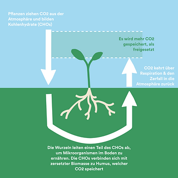 Carbon Farming Deutsch.png
