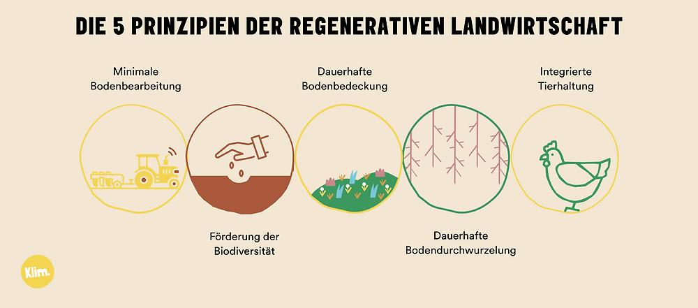 5 Prinzipien der regenerativen Landwirtschaft