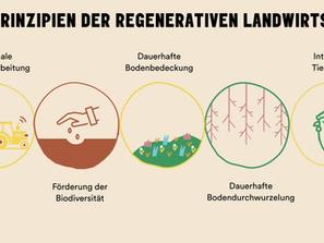KLIM'S 6 PRINZIPIEN DER REGENERATIVEN LANDWIRTSCHAFT