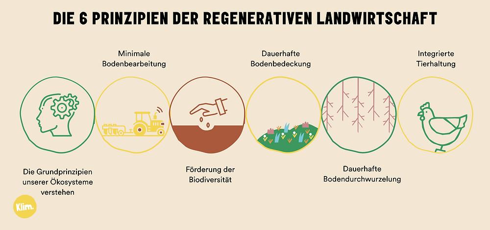 Die sechs Prinzipien der regenerativen Landwirtschaft