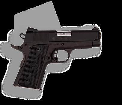 фото тир гепард  Armscor mod. M1911 A1 CS