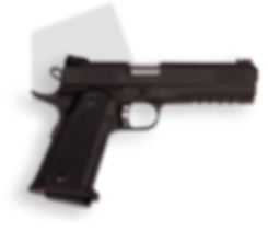 фото тир гепард  Armscor mod. M1911 A1 FS Tact II