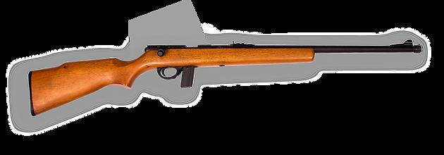 Armscor mod. RIA 22