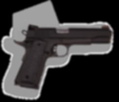 фото тир гепард Armscor mod. M1911 A2 FS Match
