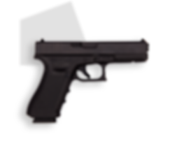 фото тир гепард  Glock mod. 21 Gen 4 (Австрия)