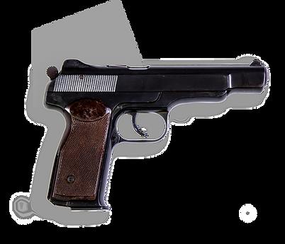 фото тир гепард  С-АПС (Спортивный пистолет Стечкина)