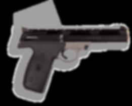 фото тир гепард Smith & Wesson mod. 22A (США)