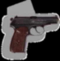 фото тир гепард C-ПМ-А (Пистолет Макарова спортивный)
