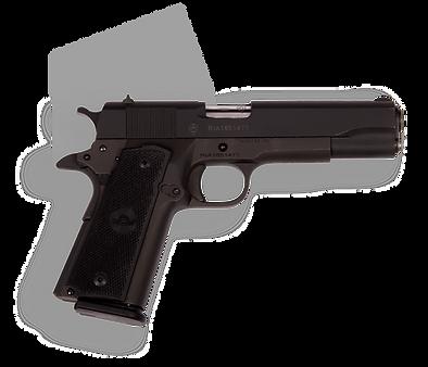фото тир гепард  Armscor mod. M1911 A2 FS