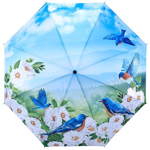 Blue Birds - Folding
