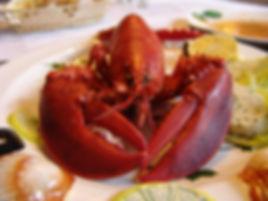 lobster-752705_1920.jpg