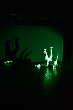 M-laboratory「いなくなる動物」沖縄公演