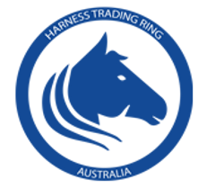harness trading ring australia-.png