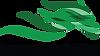 egmont park stud logo.png