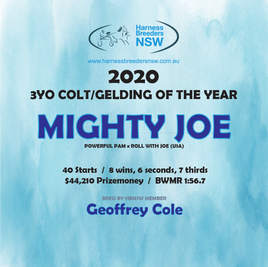 2020-HBNSW-AwardWinner-3YO-COLT-GELDNG.j
