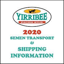 yirribee-semen-info.jpg