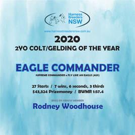 2020-HBNSW-AwardWinner-2YO-COLT-GELDING.
