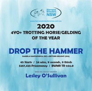 2020-HBNSW-AwardWinner-4YO+-TROTTING-HOR