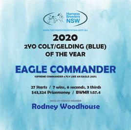 2020-HBNSW-AwardWinner-2YO-COLT-GELDING-