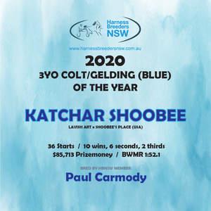 2020-HBNSW-AwardWinner-3YO-COLT-GELDING-